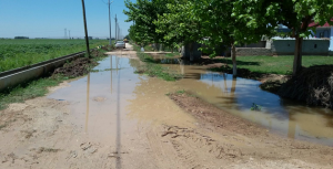 Urfa'da Bilinçsiz Sulama Yol Kapattı