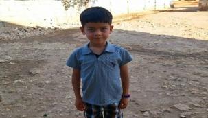 Şanlıurfalı Halil Türkiye'de birinci oldu