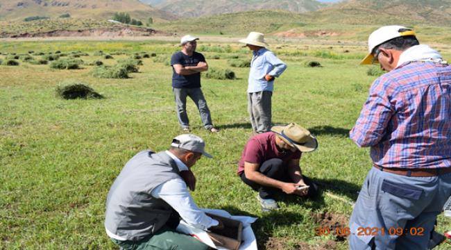 Harran Üniversitesi'nin Pamuk Verimi ile İlgili Proje